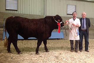 2014 Show & Sale, Reserve Male Champion, Ashbury Mason with Connor Melvin.