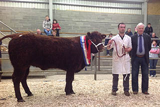 2014 Show & Sale Female Champion, Ashbury Lollipop and Connor Melvin.