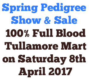 Spring Pedigree Show & Sale now online