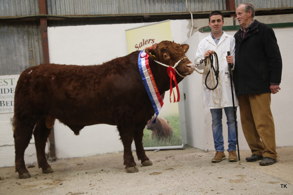Spring Pedigree Show and Sale 2018