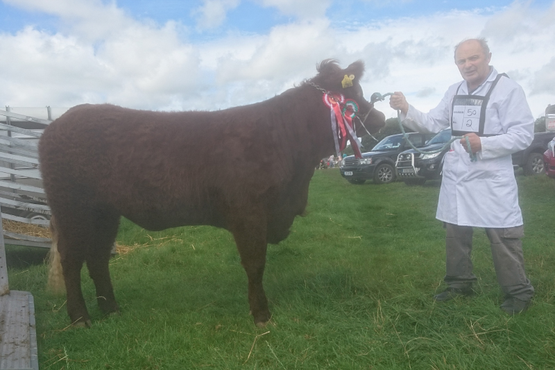 Cappamore Show 18th August 2018